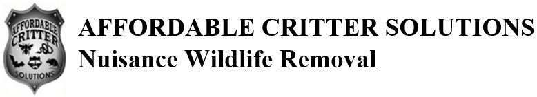 Orlando Wildlife Removal | Family Owned and Operated