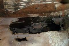 Bat Intrusion Removal